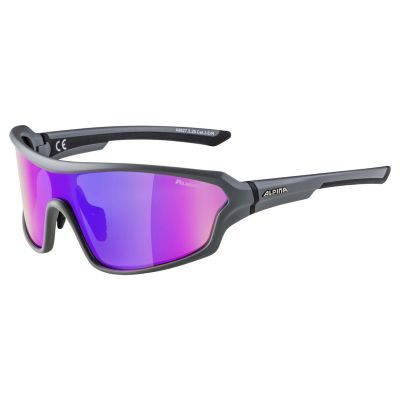 Alpina Lyron Shield P Glasses Grey/Purple Lens